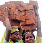 Technical Sheet: Fired Clay Bricks