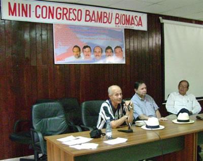 bambu_biomasa_001.jpg